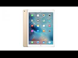 iPad PRO 1ère Gen.
